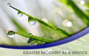 NavLink Disaster Recovery Service