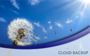 NavLink Cloud Backup